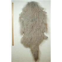 Half pelt fine silver gray Tibetan lambskin 24565