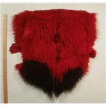 Half pelt Carmine red 2 tone Tibetan lambskin  24571