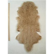Quarter pelt Pale Blonde B Tibetan lambskin  24610