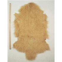Quarter pelt Yellow Gold Tibetan lambskin  24617