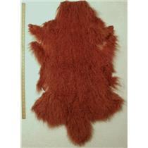 Half pelt brown red Tibetan lambskin 24619