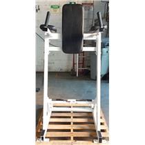 Hammer Strength Leg Raise & Ab Abdominal Board