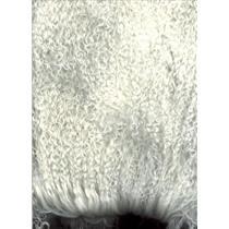 "2"" sq Natural white tibetan lambskin loose curls no seam  25507"