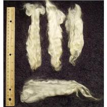 "mohair washed white adult angora goat 5-8"" 1 oz  23410"