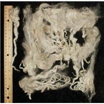 "Suri Alpaca extra long cria wool cream 6- 9"" 1 oz 24390"