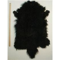 full pelt fine Black Tibetan lambskin 24558