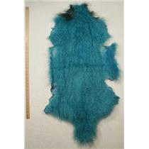 Quarter pelt Turquoise Tibetan lambskin  24575