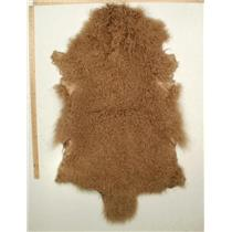 full pelt dark Blonde one dark spot  Tibetan lambskin 24767