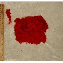 "Suri Alpaca Bright red  1% 4-6"" cria wool   1 oz 24850"