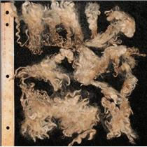 "Mohair raw white fine adult crimpy curls 8 .5 oz oz 3-6"" 25108"