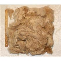 Washed Llama wool Beige to spin or felt 5 oz 25435