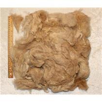 Washed Llama wool Beige to spin or felt 5 oz 25435