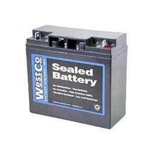 Motorcycle Battery BMW K1200LT R1100RS R1150GS R1100 R75/5 R1200C 12V20P Westco