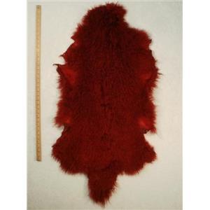 full pelt fine carmine red dark Tibetan lambskin 24555