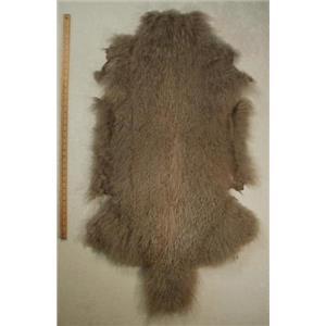 full pelt fine silver gray Tibetan lambskin 24564