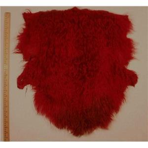 Half pelt Carmine red dark 2 tone Tibetan lamb 24584