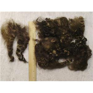 Cotswold wool locks varagated golden brown 1oz  23443