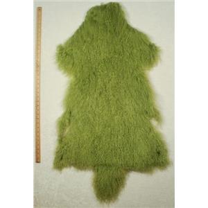 Quarter pelt Lime green Tibetan lambskin  24578