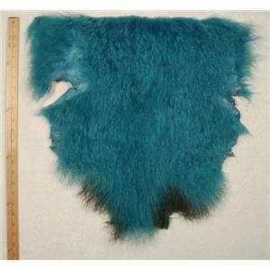 Half pelt Turquoise 2 tone  Tibetan lambskin 24665