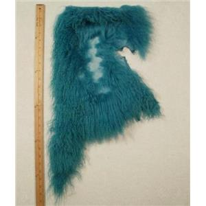Quarter pelt Turquoise  remnant Tibetan lambskin  24667