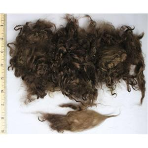 "medium neutral brown fine adult mohair 3-6"" 1 oz of sorted locks 26110"