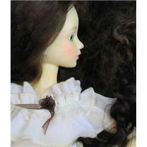 color 4B brown  Wig making dye Jar,will Dye 2 lb mohair 26238