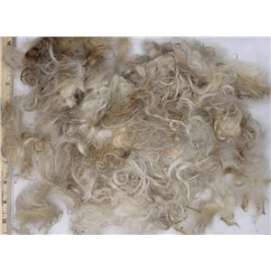 """Mohair raw white fine adult short remnant lot  slightly wavy 2.7 oz 1-3"""" 26663"""