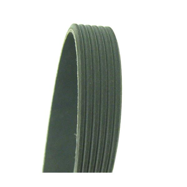 Cadna 1000K6 Serpentine Belt Fits F250 5.4L Super Duty