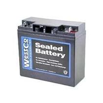 Motorcycle Battery BMW K1200LT R1100RS R1150GS R1100 R75/5 R1200C 12V20P Westco