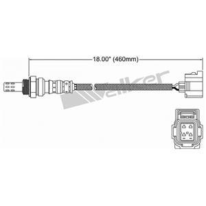 Oxygen Sensor-OE Walker Products 250-24251 Fits 05-07 Dakota 4.7L