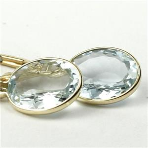 E101, Aquamarine, 14k Gold Leverback Earrings