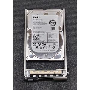 "Dell ST9250610NS 250GB 7.2K 2.5"" SATA III 6Gbps HDD DNTWD w/ R-Series Tray"