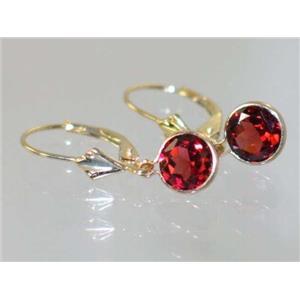 E011, Mozambique Garnet, 14k Gold Earrings