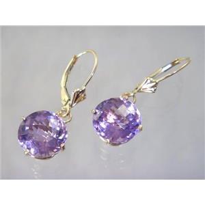 E217, Amethyst, 14k Gold Earrings