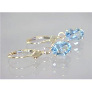 E007, Aquamarine, 14k Gold Earrings