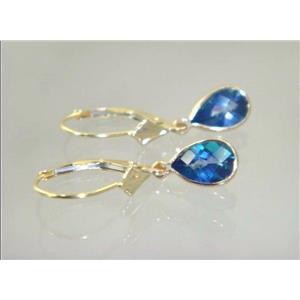 E021, Neptune Garden Topaz, 14k Gold Earringss
