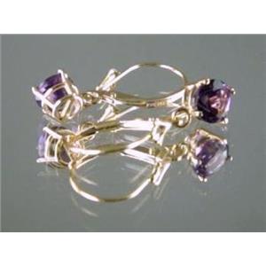 E017, Amethyst, 14k Gold Earrings