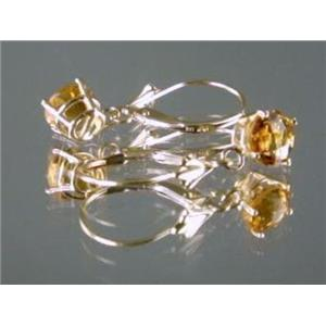 E017, Citrine, 14k Gold Earrings