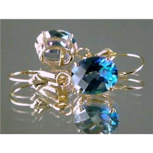 E107, Neptune Garden Topaz 14k Gold Earrings