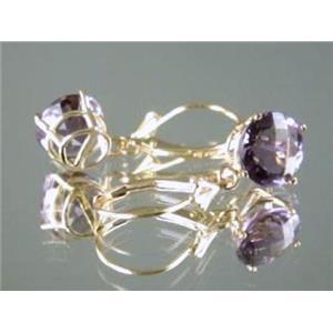 E117, Amethyst, 14k Gold Earrings