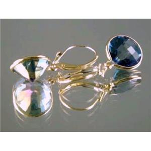 E201, Neptune Garden Topaz, 14k Gold Earrings