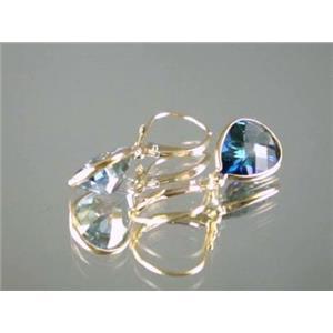 E221, Neptune Garden Topaz, 14k Gold Earrings